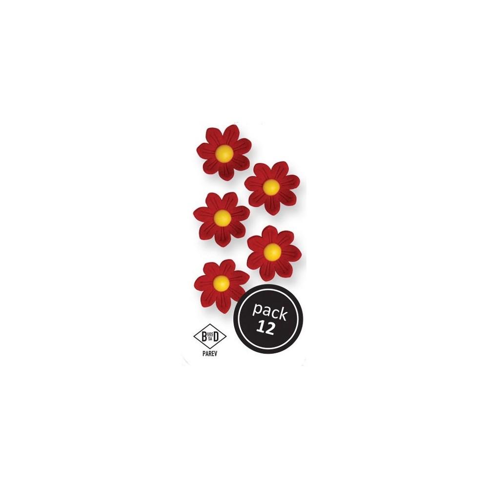 Fleurs marguerites en sucre rouges x12