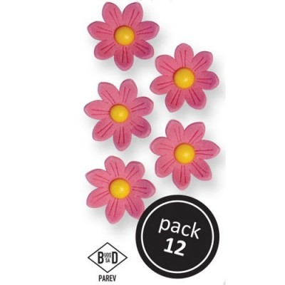 Fleurs marguerites en sucre roses x12