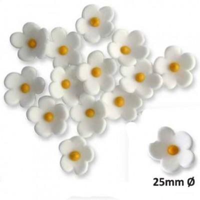 Fleurs en sucre blanches x30