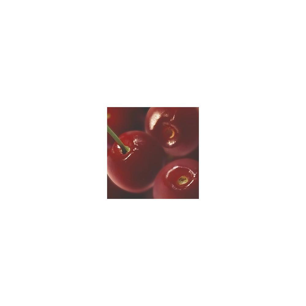Purée de griottes Ravifruit