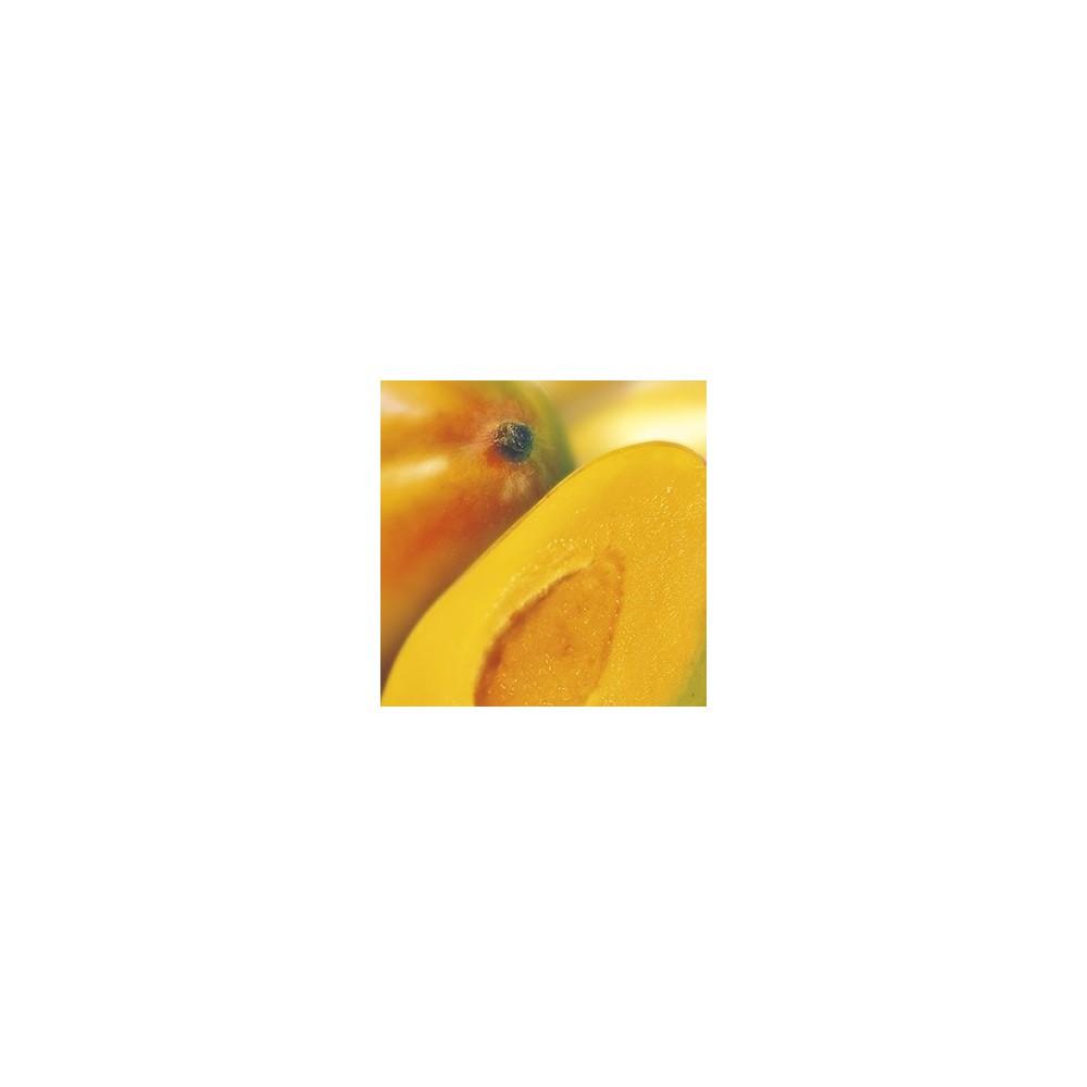 Purée de mangues