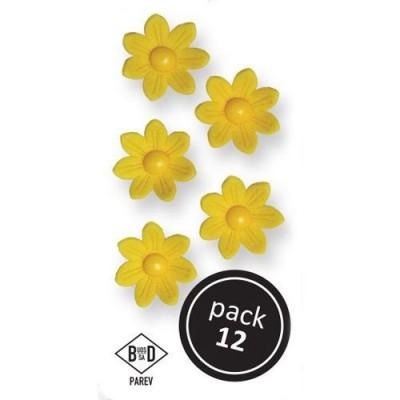 Fleurs marguerites en sucre jaunes x12